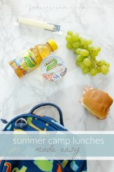 Summer Camp Lunches Motts