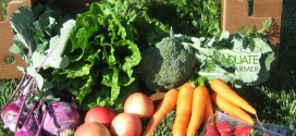 farm-vegetables