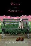 Emily and Einstein book cover
