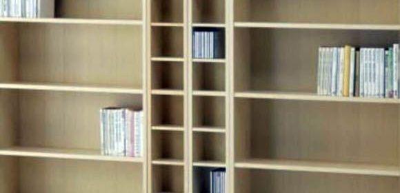 Biblioteca-vacia