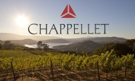 chappelletvineyardfeature