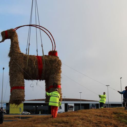 Christmas Goat Back To Tempt Fate