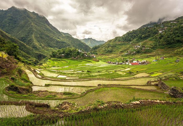 Rice Terraces of the Philippine Cordilleras (photo from Wikipedia)