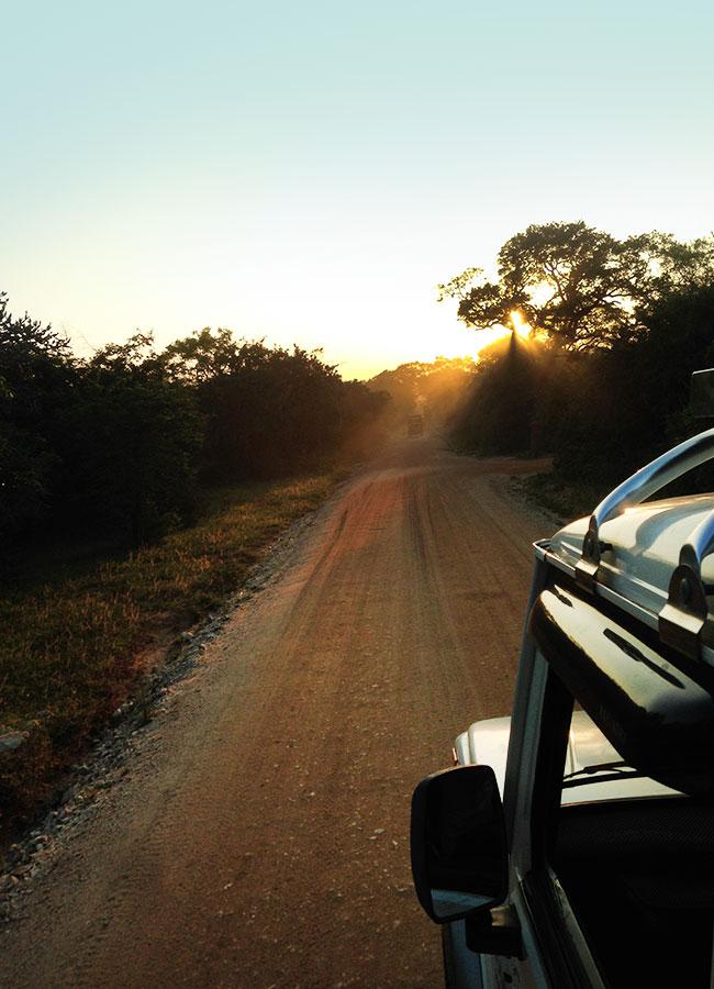 safari-heading-back-yala