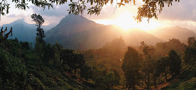 sunsetting-at-adams-peak