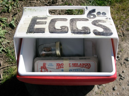 Eggs $6