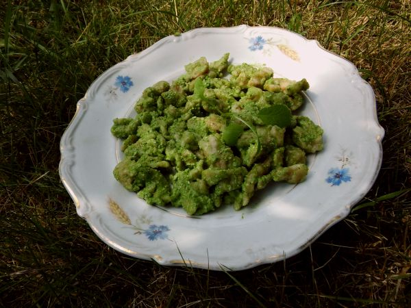 pesto ziołowe do klusek1