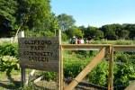Clifford Park sign & garden