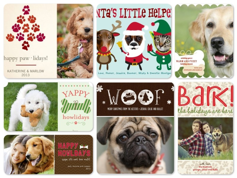 Large Of Dog Christmas Cards