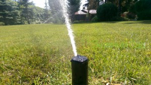 полив газона ротором