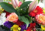 Flowers-in-Holland-(2)