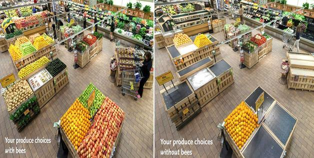 produce choices without bees