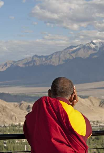 Leh Pensive monk V