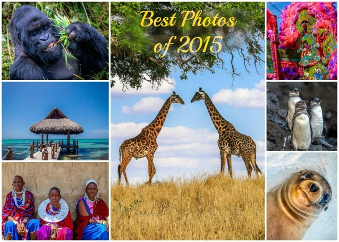 Best Photos of 2015