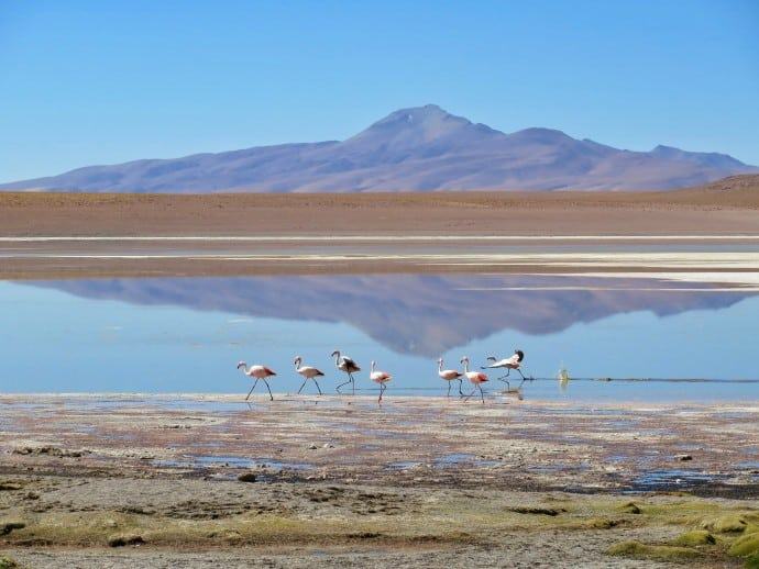 Top Travel Destinations of 2016- Bolivia