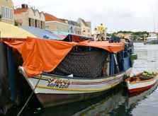 boat_produce