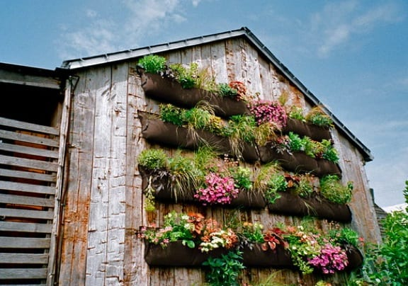 Go green tip 99 how to make a do it yourself vertical garden for Do it yourself landscaping