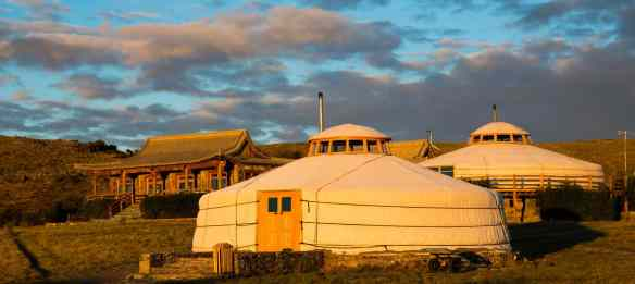 three camel eco lodge, mongolia