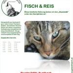 cat-fish