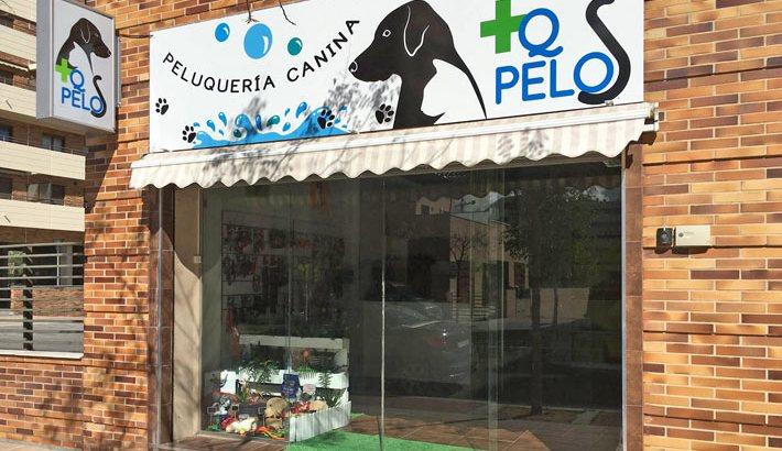 +Qpelos distribuidor Greenheart en Vitoria Gasteiz
