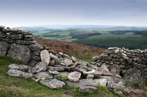 feb-13-eco-rabbi-stones-across-the-path-green-prophet.jpg