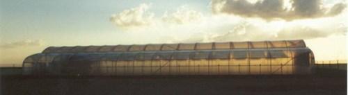 abu dhabi seawater greenhouse image