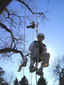 ClimbingTrees3