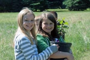 tree planting in schoolyard option1