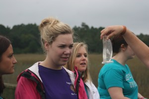 F. Water quality testing