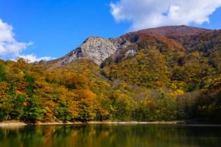 juniko_autumn