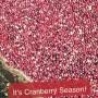 cranberry season1