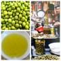 olive oil diptic1