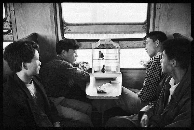 Photo via Wang Fushun