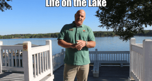 Life on the Lake