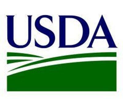 USDA Choice?