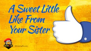 #15 A Sweet Little Like From Your Sister.001