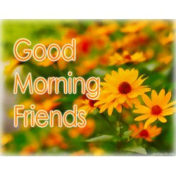 Debonair Illness Thinking Good Morning Gifs Good Morning Gifs Everyday Greetings Thinking You Messages You Messages Surgery