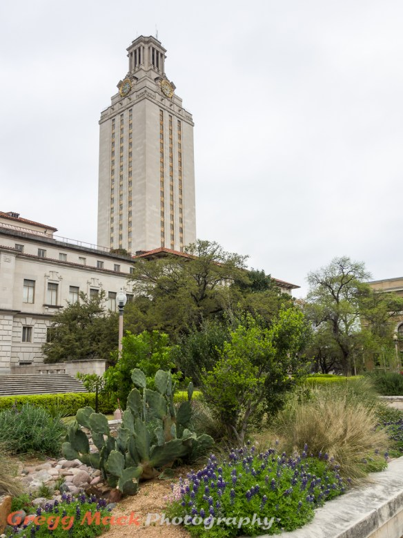 20130316_Univ_of_Texas_Campus_032