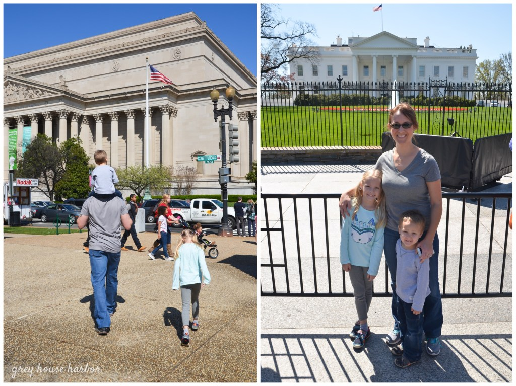 spring break in DC | greyhouseharbor.com