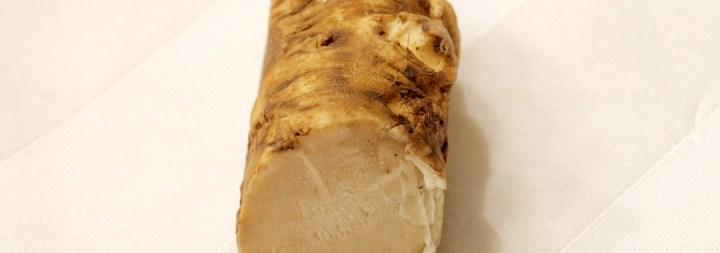 Fried Matzoh Grilled Cheese: Fresh Horseradish