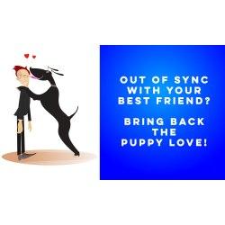 Small Crop Of Putting The Dog To Sleep Lyrics