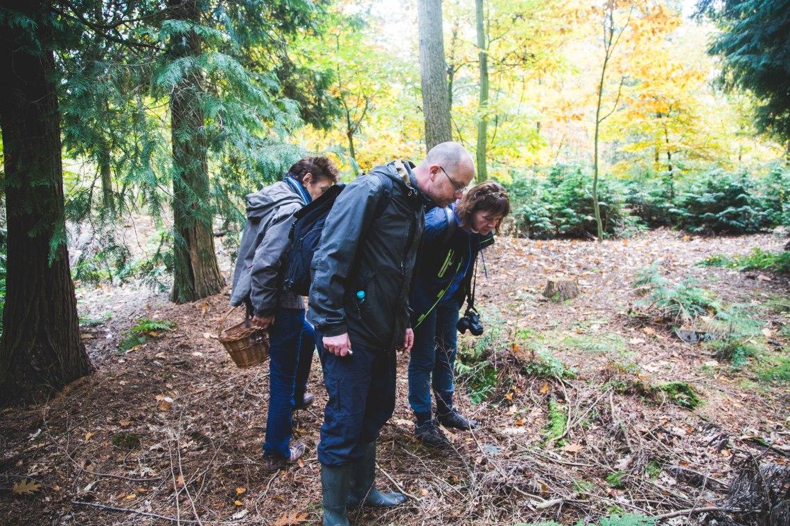 groene-avonturen-eetbare-paddenstoelen-wildpluk-19