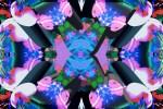 Inner Space 2