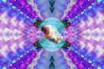 Cosmic Womb (Redux)