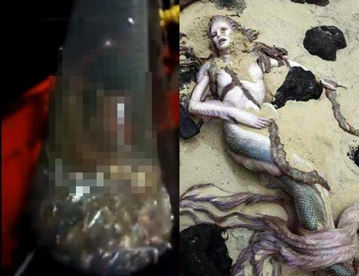 【閲覧注意】漁網挙げたら人魚が掛かってる!→水死体でした・・・ 動画有り