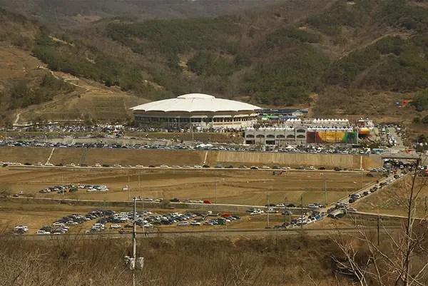 cheongdo bull fighting festival, korean bullfighting, popular festivals in korea, festivals in korea