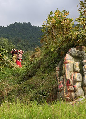 Nepalese farming gods Ganesh