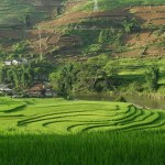 Unforgettable Sapa: Hill Tribes & Homestays (Sapa tour: Day 2)