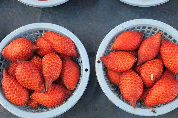 southeast asia fruits, sarawakian flavours, snake fruit