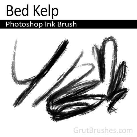 Photoshop Ink Brush toolset 'Bed Kelp'